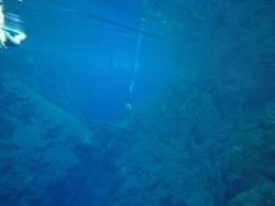 Mysterious Lagoon water, Bonito